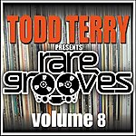 Todd Terry Todd Terry's Rare Grooves Vol 8