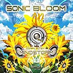 Mind Storm Sonicbloom