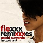 Todd Terry Flexxx (The Remixes)