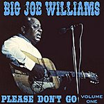 Big Joe Williams Please Don't Go Vol 1