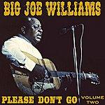 Big Joe Williams Please Don't Go Vol 2