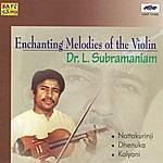 Dr. L. Subramaniam Dr.L.Subramaniam - Violin