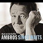 Wolfgang Ambros Ambros Singt Waits - Nach Mir Die Sintflut