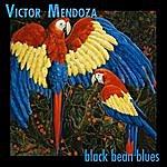 Victor Mendoza Black Bean Blues