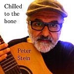Peter Stein Chilled To The Bone