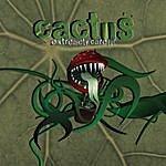 Cactus Extremely Careful