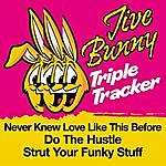 Jive Bunny & The Master Mixers Jive Bunny Triple Tracker: Never Knew Love Like This Before / Do The Hustle / Strut Your Funky Stuff