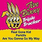 Jive Bunny & The Master Mixers Jive Bunny Triple Tracker: Real Gone Kid / Parklife / Are You Gonna Go My Way