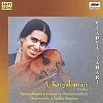 A. Kanyakumari A.Kanyakumari - Vadya Lahari (Violin)