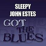 Sleepy John Estes Sleepy John Estes