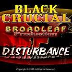 Black Crucial Disturbance