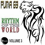 Puma 69 Puma 69 Rhythm Of The World Vol 3