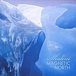 Shalini Magnetic North