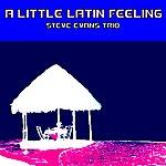 Steve Evans A Little Latin Feeling