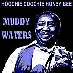 Muddy Waters Hoochie Coochie Honey Bee