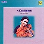 """A. Kanyakumari A.Kanyakumari - """"Dudukugala"""" - Violin"""