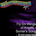 Molly Hatchet Fly On Wings Of Angels - Somer's Song - Instrumental