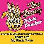 Jive Bunny & The Master Mixers Jive Bunny Triple Tracker: Everybody Loves Somebody Sometimes / That's Life / My Kinda Town