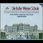 Camerata Bern Thomas Füri - The Early Viennese School
