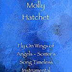 Molly Hatchet Fly On Wings Of Angels - Somer's Song Timeless Instrumental