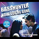 Basshunter Now You're Gone (Gsa Itunes)