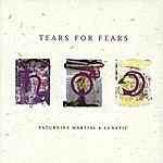 Tears For Fears Saturnine Martial & Lunatic
