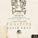 David Gray Fugitive