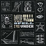 David Wall The Spell I Was Under