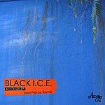 Black Ice Ant Droidz