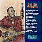 Big Joe Williams Jinx Blues