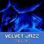 Velvet Velvet Jazz