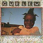 Curlew Live In Berlin