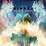 Mimosa Silver Lining