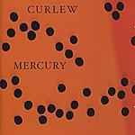 Curlew Mercury
