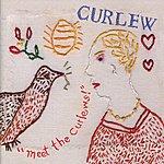 Curlew Meet The Curlews