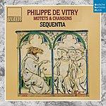 Sequentia Dhm Splendeurs: Vitry: Motets Et Chansons