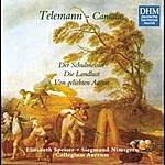 Collegium Aureum 40 Years Dhm - Telemann: Three Secular Cantatas