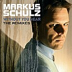 Markus Schulz Without You Near (The Remixes)