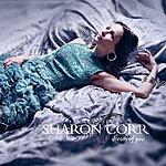 Sharon Corr Dream Of You