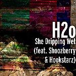 H2O She Dripping Wet (Feat. Shoozberry & Hookstarz)