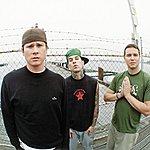blink-182 Not Now (Single)