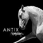 Antix Cavalier
