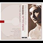 Maria Callas Bellini: Norma (1954)
