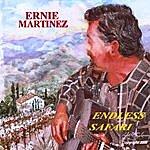 Ernie Martinez Endless Safari