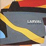 Larval Obedience