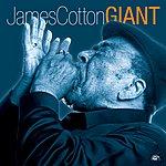 James Cotton Giant