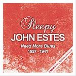 Sleepy John Estes Need More Blues - 1937 - 1941