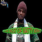 Natty King The Best Of Natty King