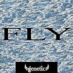 Genetic Fly