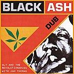 Sly & The Revolutionaries Black Ash Dub